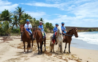 Family Horse Ride In St. Lucia