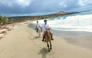 horse riding along the beach St. Lucia