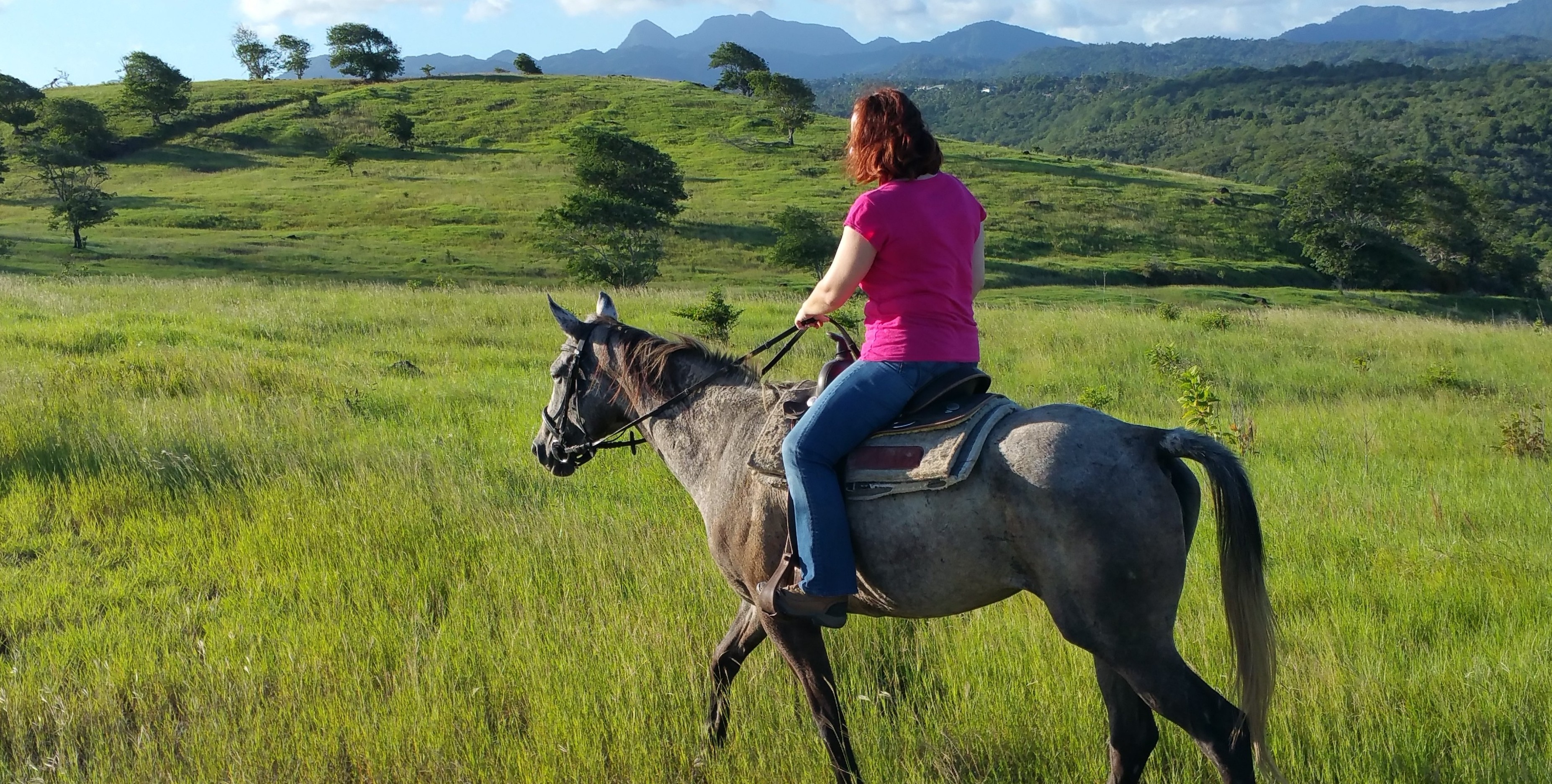 Countryside horse ride in St. Lucia