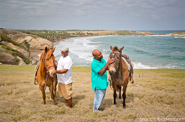 Equitrekking Article Horseback Riding In St.Lucia